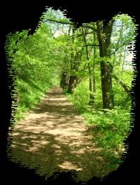 En Camino