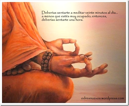 Odres Nuevos - Meditar